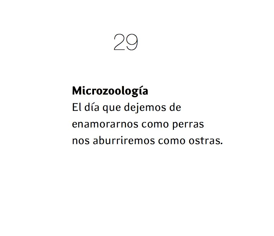 micropoema ajo